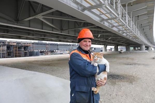 """Screenshot-2018-5-16 Кот Моста on Instagram """"Сегодня весь день буду поздравлять строителей с Днём труда, а это тоже т"""